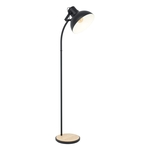 Floor lamp LUBENHAM 43166